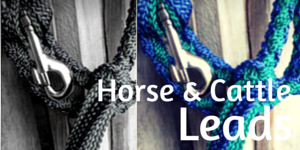 Horse & Cattle Leads
